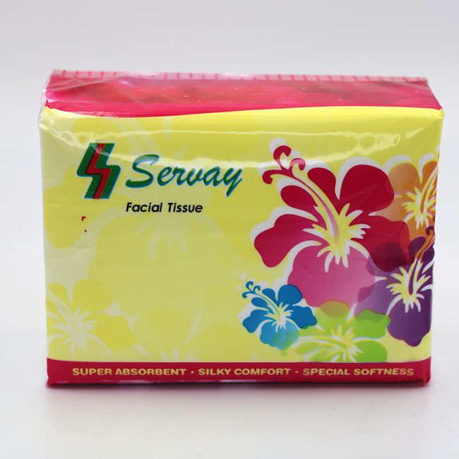 Home Use 2Ply 3Ply 4Ply Facial Blotting Paper Tissue Facial Tissues Paper Soft Pack